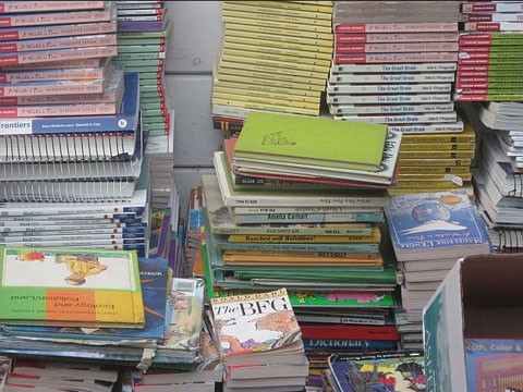 Most of the books are in excellent condition.  We are most grateful to the book donors.