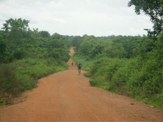 Long dirt road to Star of the Sea School, Buni, Ghana, West Africa